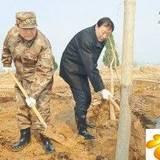 赵克石陈国令罗志军等参加义务植树活动