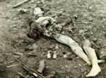 越军被我军火炮炸碎